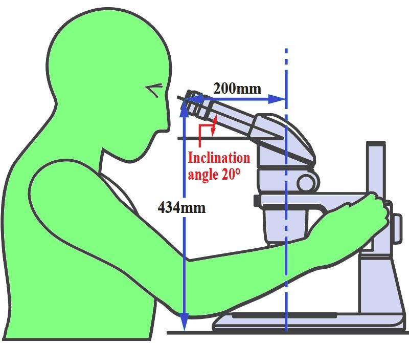 Микроскоп бинокулярный стереоскопический.jpg
