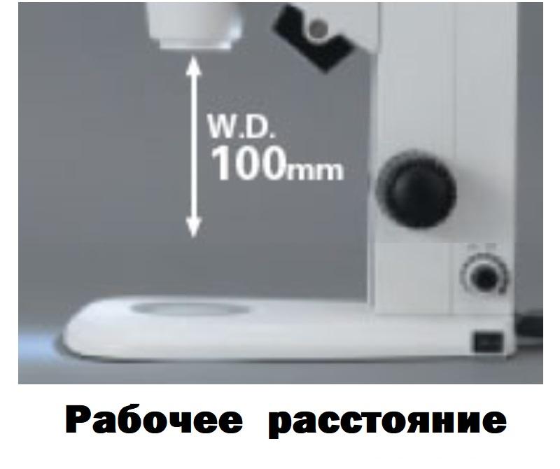 Стереомикроскоп цена